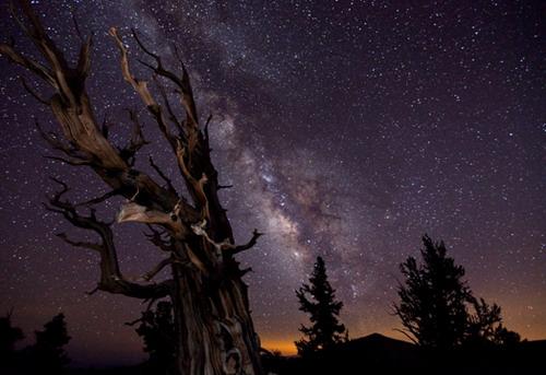Лучшая астрономическая фотография 2010 года